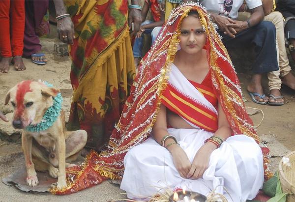 Una joven india se casa con un perro para romper la mala suerte a su familia
