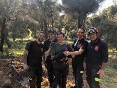 Los Bomberos de la Comunidad de Madrid rescatan a Lola, una perrita teckel atrapada en una madriguera en Majadahonda