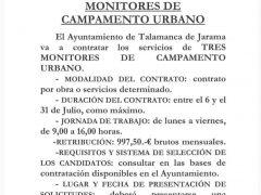 El Ayuntamiento de Talamanca de Jarama necesita tres monitores de campamento urbano