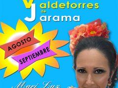 El Ayuntamiento de Valdetorres de Jarama lanza un programa de verano cultural lleno de música y diversión para todos los públicos