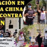 Concentración frente a la Embajada China por los más de 100.000 perros torturados y asesinados en el festival de carne de Yulín