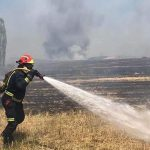 Detenido el autor de los incendios de Valdepiélagos y El Casar