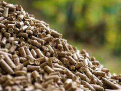 Talamanca de Jarama tendrá su propia planta de pellets que serán generados con residuos del Punto Limpio