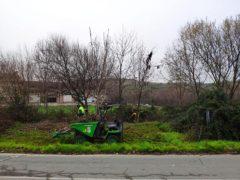 Ya han comenzado los trabajos de limpieza de «El Plantío» de Valdepiélagos