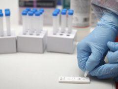 Ningún positivo de Covid-19 en Talamanca de Jarama del 33,9% de la población a la que se le hizo test de antígenos
