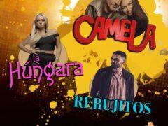 Valdetorres de Jarama ofrece el 'Festival FlamencoSur 2021' con Radiolé el 3 de julio